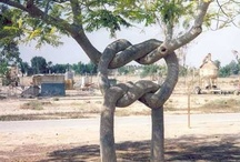 All Knotted Up / by Marcia Wright