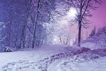 Scenes d'hiver