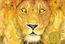 For the Love of Lions / All kinds of books about Lions!