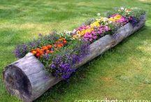 Backyard Retreats / Outdoor and gardening ideas to make the yard an everyday retreat!