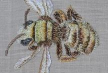 Pszczoły, insekty/ Bee, insect