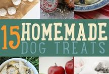 Recipes for Pets / Treats or dishes that our pets might love!