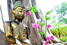 Buddha Statues and Buddha Heads / Bring Serenity and Happiness to your Home!