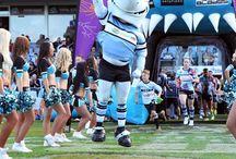 Sharkies / Up Up Cronulla!