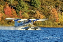 Fall Colours of Parry Sound
