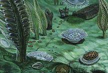 Protérozoique 635 à 250 Ma (Néo, Méso, Paléo) / Eon: Protérozoique- Ere Néo: *Ediacarien (635) organismes archaïques, métazoaires, bilatériens. *Cryogérien: glaciations Varanger (650), Sturtien (850) *Tonien (1000) formation du continent Rodinia - Ere Méso: *Sténien (1200) Eucaryotes multicellulaires, *Etasien (1400), *Calymmien (1600) -Ere Paléo *Stattérien (1800) émergence du continent Columbia *Orosirien (2050) 1° eucaryotes, athmosphère riche en O2, grande oxydation, glaciation huronnienne *Rhyacien, *Sidérien.