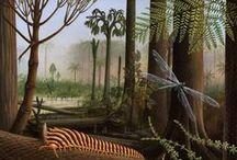 Carbonifère 303,7 à 358,9 MA (Pennsylvanien, Mississippien) / Ere: Paléolozoique (Primaire). Période: carbonifère: Insectes géants, 1° sauropsides (reptiles), arbres primitifs de grande taille, fossilisation importante de matière organique.2 époques: *Pennsylvanien (Silésien): Gjélien (303,7 +0,1), Ksimovien (307,0 +0,1), Bachkirien (323,2 +0,4). *Mississippien (Dinantien): Serpoukhovien (330,9 +0,2), Viséen (346,7 +0,4), Tournaisien (358,9 +0,4).