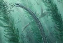 Jurassique 152,1 à 201,2 MA (Supérieur, Moyen, Inférieur) / Ere: Mésozoïque (Secondaire). Période: Jurassique. 3 époques: SUPERIEUR (Malm): *Tithonien (152,1 +0,9) *Kimmédgien (157,3 +1,0) *Oxfordien (163,5 +1,0): mamminfères marsupiaux, 1° oiseaux, 1° plantes à fleurs. - MOYEN (Dogger): *Callovien (166,1 +1,2) *Bathonien (168,3 +1,4) *Bajocien (170,3 +1,4) *Aalénien (174,1 +1,0) - INFERIEUR (Lias): *Toarcien (182,7 +0,7) *Pliensbachien (199,3 +0,3) *Hettangien (201,3 +0,2): division de la Pangée.
