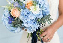 Wedding - Bouquet / Wedding Bouquet Inspiration