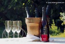 Le Jus Didier GOUBET / Présentation des jus de raisin BIO haut de gamme, de divers crus tel que le Merlot et le Sémillon