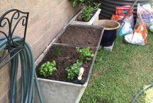 Happy Garden Pot Plants ☘️
