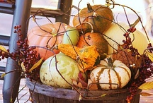 Autumn Greetings / One of God's most beautiful seasons...the colors and smells of autumn are awesome! / by Candy Thompson
