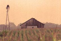 I heart barns / by Dawna-Rae Razmuffin