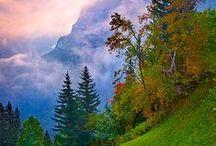 Shades of Seasons