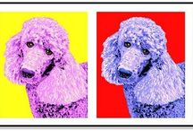 Poodle Stuff / by Pam