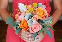 Big Day / Wedding ideas <3 / by Amber Buckham