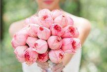 Floral Inspiration / Bouquets, button holes, centerpieces.