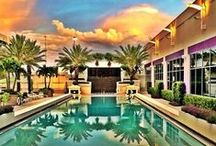 Guest Experiences / Experiences from the perspective of our guests / by Seminole Hard Rock Hotel & Casino Tampa