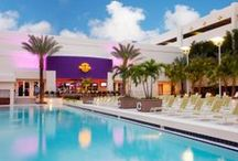 Luxury Amenities / All the necessities and luxuries you'd expect for a rockstar experience. / by Seminole Hard Rock Hotel & Casino Tampa