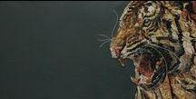 Mosaico - Mosaik / Il mosaico è composto da tessere, che possono essere regolari di stessa dimensione oppure di dimensione completamente diverse che vanno a creare un'immagine. I materiali più usati sono marmi e smalti (pasta vitrea). --- Ein Mosaik besteht aus vielen kleinen Teilchen, die gleich oder verschieden groß sein können. Aus der Zusammensetzung dieser Teilchen entstehen Muster oder Bilder. Die meist verwendeten Materialien sind Natursteine und farbiges Glas (smalti veneziani).