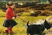 To Do in the Scottish Highlands