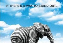 Inspirational Advertising / Find a way to stand out amongst the crowd. Here are some creative examples that inspire us!