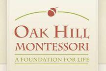 All about Oak Hill Montessori, Shoreview MN