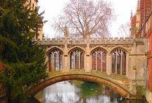Move to Cambridge