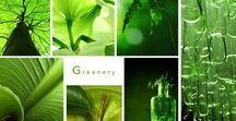 Greenery - Anders Style / Naar jaarlijkse gewoonte heeft Pantone opnieuw een 'color of the year' gekozen. Voor het jaar 2017 is dat Greenery.