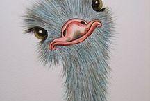 TEKENEN - VOGELS 01 / Drwaing birds 01 / BIRDS