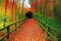 WANDELPADEN / Hiking trails