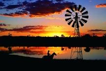 Australia My Home / by Stephanie Pemberton