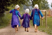 Amish roots! Love this / by Tracy Williams
