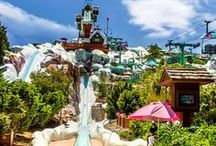 Beat the Heat! Water Park Fun