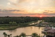 The Social Buzz / Media buzz and stories about Four Seasons Resort Orlando