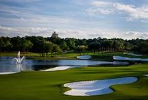 Fore! / Hitting the Links at Four Seasons Orlando and Beyond!