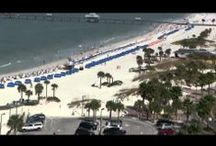 Videos from Florida Beach Rentals / A cache of our beach-related and beach rental videos from Clearwater Beach and the Florida Gulf Coast.