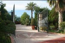 Jardín Azalea / Azalea Garden