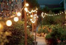 G A R D E N / Garden, outdoor, outdoor-space, plants