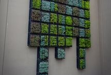 Vertical Gardens / Vertical gardens add a whole new element to green space around you.
