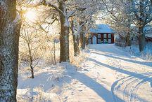 Winter Wonderland / Buiten is het koud maar binnen is het gezellig en knus. Warme chocomel met slagroom, kaarsjes aan. Fijne feestdagen om samen te vieren en wie weet een witte kerst...! Laat de winter maar komen, wij zijn er klaar voor!