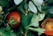 CSA Recipes - Garlic and Herbs