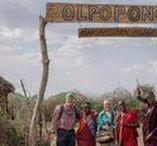 Safaris / 20+ African Safaris tours