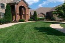 Landscaping and Lawn Care Services / We believe our Lawn Care, Landscaping, and other services are the most competitively priced in Lexington KY.