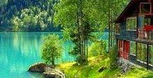 Árboles y paisajes / Naturaleza Terrestre