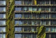 green architecture/plants