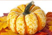 FALL / Recipes, activities, crafts, and other Fall Fun Ideas!