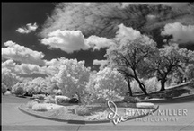 Infrared B&W Photography / Some of my favorite infrared black and white photography / by Diana Miller