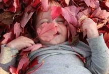 Fall in Portland, OR / Grab your pumpkin! It's time for family-friendly harvest fun