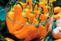 Veggie Gardening / by Park Seed